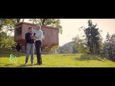 TREE.TV 0.1 mit Erwin Thoma - YouTube