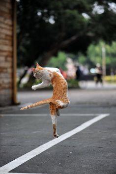 """I'm walking on sunshine, woooah  and don't it feel good!!"""