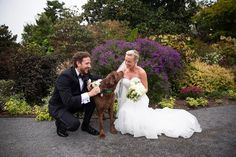Dogs are family too! We love when couples invite their furry ones to the wedding!  #photosfromtheharty