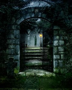 East Urban Home Ambesonne Gothic Shower Curtain, Image Of The Gate Of A Dark Old Haunted House Cemetery Dead Myst Fiction Art Print, Cloth Fabric Bath Spooky Places, Haunted Places, Abandoned Places, Abandoned Houses, Best Haunted Houses, Creepy Houses, Sombre, Stock Foto, Photography Backdrops