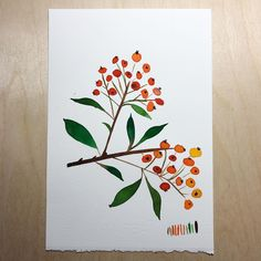 6/31: orange firethorn. This one actually felt like it got harder the more times I painted it. Berries are fun, though. #creativebug #cbdrawaday #painting #watercolor #watercolorpractice #holbein #handlettering #cursive #botanical #flowers #floralpainting #berries #orangefirethorn #twig #watercolorflowers #watercolorclass #yaochengdesign