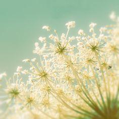33% OFF, Winter wedding cedar green nursery art fresh mint pastel... ($74) ❤ liked on Polyvore