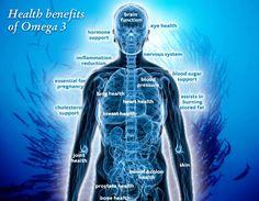 Health benefits of Omega 3 Colon Health, Bone Health, Omega 3 Epa Dha, Benefits Of Omega 3, High Blood Pressure Diet, Bodybuilding Supplements, Heart Health, Health Benefits, Health Fitness