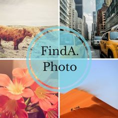 Free Stock Photos: 74 Best Sites To Find Awesome Free Images – Design School Stock Photo Sites, Free Stock Photos, Free Photos, Cool Photos, Free Images, Easy Photo Editor, Image Sites, Website Images, Simple Photo