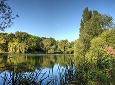 Parc du château de Morsang-sur-Orge - Lac aux oiseaux