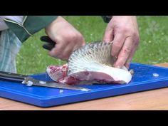 (11) Instruktážní video zpracování ryb - kapr a pstruh - YouTube
