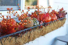 Fall window box. Since my real flowers always die :(