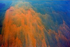 J Henry Fair, Agent Orange, Gulf of Mexico, 2010. Oil floats on the Gulf of Mexico, following the Deepwater Horizon spill