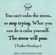 You can't the storm, so stop trying. What you can do is calm yourself. The storm will pass. ♥ #quotes #life #keepcalm