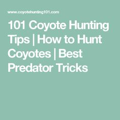 101 Coyote Hunting Tips | How to Hunt Coyotes | Best Predator Tricks