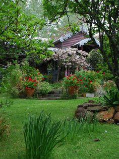 The Foxglove Spires Gardens @ Tilba Tilba