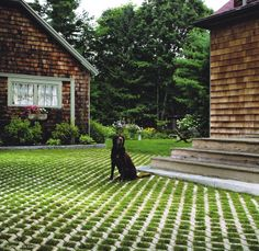 Turfstone is an eco-friendly option for driveways or paths. Permeable Driveway, Driveways, Circle Driveway, Grass Pavers, Ground Effects, Carport Designs, Porch And Balcony, House On The Rock, Summer Garden