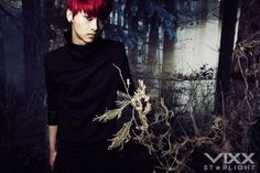 N - VIXX - Hyde Concept Photo
