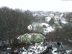 http://www.vab-boossen.de/images/Schnee%20am%2002_04.jpg