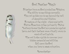 New Version of Owl Feather Magic *Please check your local and federal guidelines for feather collection and possession! Feather Symbolism, Feather Meaning, Animal Symbolism, Animal Spirit Guides, Your Spirit Animal, Finding Feathers, Willow And Sage, Smudging Prayer, Owl Feather