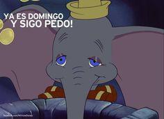 Dumbo nos entiende mejor que nadie.