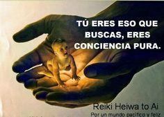 Tú eres eso que buscas, eres pura consciencia. INFO:http://cursoshao.blogspot.com.es/ Por un mundo pacífico y feliz!!