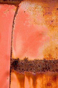 Salmon Rust - Janet Little Jeffers