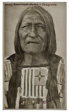 Ve'ho'evo'hame, or Chief American Horse - northern Cheyenne