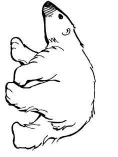We used this polar bear picture for or Polar Bear theme.