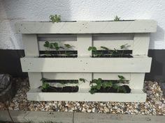 Vertikal Gärtnern - Pflanzen auf kleinem Raum / Beet aus (Euro)Palette selber bauen / Kräuterbeet / Blumenbeet / DIY Balkon Garten Terrasse