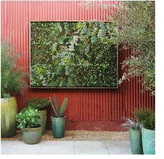 Succulent Frame - contemporary - patio - detroit - Bright Green Flora Grubb Designed Living Art piece, using Bright Green Living wall planter Succulent Frame, Vertical Succulent Gardens, Succulent Wall Art, Vertical Garden Diy, Vertical Planter, Plant Wall, Plant Pots, Outdoor Wall Art, Outdoor Walls