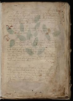 The Voynich Manuscript The Voynich Manuscript is a document that is notable for it's strange text, that to date hasn't been decyphered. Theories range from a secret language or code to an old sort of joke or hoax. Keywords: voynich; manuscript Downloads: 144,905