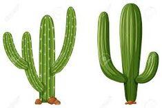 cactus ilustracion - Búsqueda de Google
