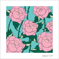 #roses #colorfy