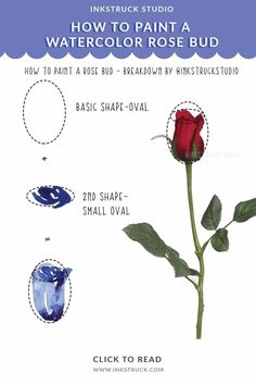 How to paint a watercolor rose bud step by step tutorial-Inkstruck Studio Watercolor Tips, Watercolour Tutorials, Online Lessons, Basic Shapes, Your Paintings, Rose Buds, Creative Art, Free Design, Hand Lettering