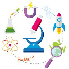 5 Easy Science Experiments to Try at Home Easy Science Experiments, Parents As Teachers, Parent Resources, Parenting, Kids Rugs, Relationship, Kid Friendly Rugs, Simple Science Experiments, Relationships