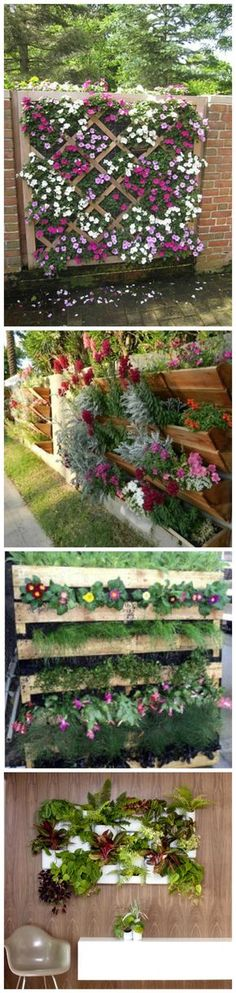 Vertical Garden …