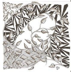 It's a String Thing 8 - 008 - Zinger, Zedbra, Zenplosion Folds, Zuan Shi