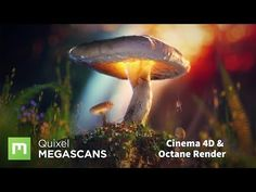 How to create scenes using Megascans with Octane and Cinema 4D - YouTube