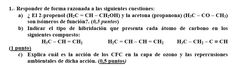 Ejercicio 1, P2 Examen PAU Canarias, Setiembre 2003-2004. Título: Hibridación