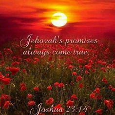 So true. Jehovah will not and cannot tell a lie. All the good promises from Jehovah will without fail come true.