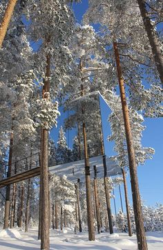 One of the tree rooms at the Tree Hotel in Harads, Sweden. This one is called The Mirror Cube