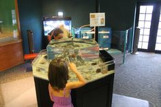 Touch tanks