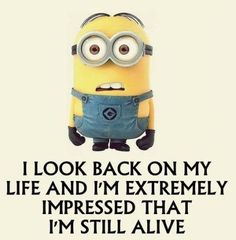 Top 29 Latest Funny Minion Quotes... - 29, Funny, Funny Minion Quote, funny mini...