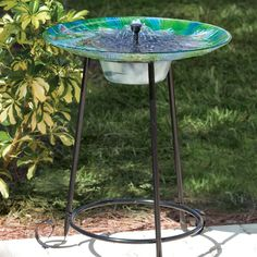 Give your outdoor space an extra pop of color with this Outdoor Garden Solar Fountain Bird Bath with Peacock Glass Basin and Steel Stand. A vivid peacock, in sh Fountains For Sale, Solar Fountains, Bird Bath Fountain, Fountain House, Glass Basin, Diy Solar, Outdoor Gardens, Outdoor Decor, Outdoor Lighting