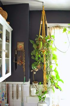 Use Plants To Lighten Up Dark Spaces In Your Home!