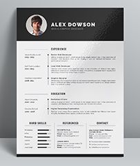 The Modern Resume Enchanting Sample Resume Format  Resume  Pinterest  Sample Resume Format .