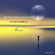 We carry inside us the wonders we seek outside us . Rumi ♥ Wir tragen in uns die Wunder, die wir außerhalb von uns suchen. Rumi