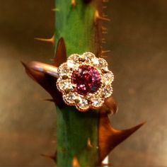 Every rose has its...Mosaic ring in #RoseGold with diamonds and berry sapphire. #Valentines #AlternativeBridal