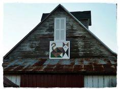 cat quilt on barn