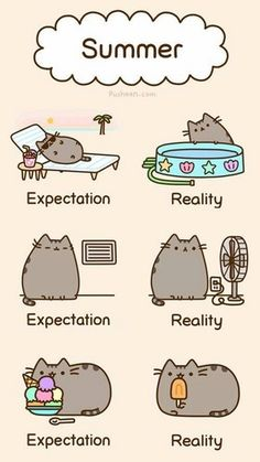 summer fun - Pusheen the Cat Photo (37024757) - Fanpop                                                                                                                                                                                 More