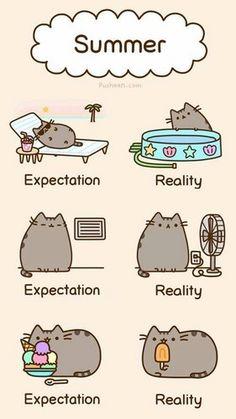 summer fun - Pusheen the Cat Photo (37024757) - Fanpop