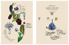 Cartier - Calligraphy by Nicolas Ouchenir, illustrations by Florence Tetier.