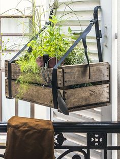 BACSAC - pots, jardinières, potagers urbains