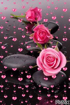 kalp ve gül – PicMix – Blumen Dekoration Beautiful Flowers Images, Beautiful Love Pictures, Beautiful Flowers Wallpapers, Beautiful Nature Wallpaper, Beautiful Gif, Pretty Wallpapers, Flower Images, Amazing Flowers, Beautiful Roses